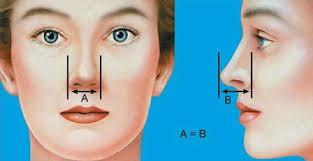 بهترین جراحان بینی